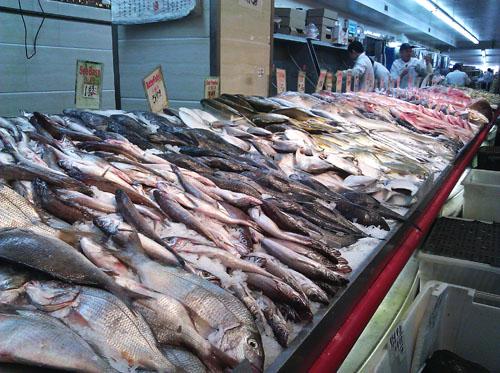 J Mart Fresh Fish Display